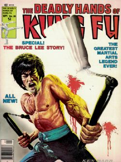 Deadly Hands Of Kung Fu (1974) 28