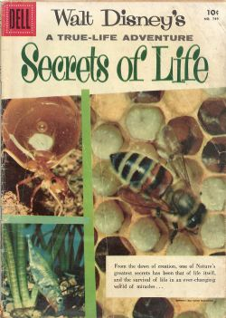 Secrets Of Life (1956) Dell Four Color (2nd Series) 749